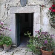 (Italiano) Le piante in vaso, a Borgo Spante, hanno una vita lunghissima…