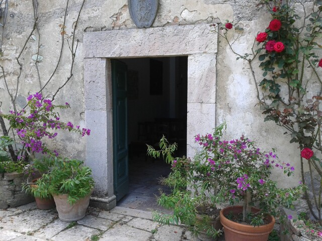 Le piante in vaso, a Borgo Spante, hanno una vita lunghissima…